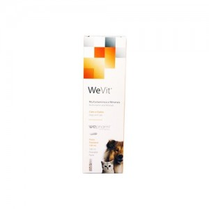 WEVIT TASTY GEL