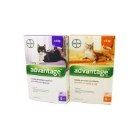 ADVANTAGE GATO - 4 PIPETAS