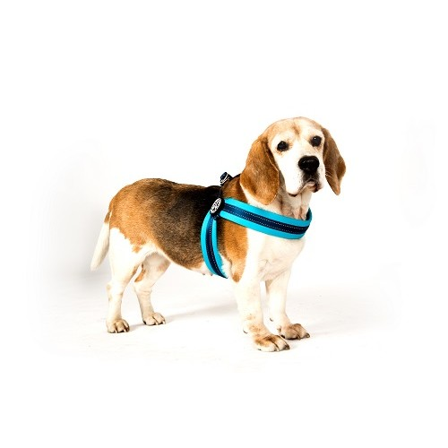 Q-FIT HARNESS MATRIX GREEN - MAX & MOLLY