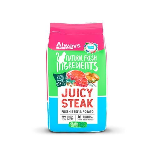 ALWAYS CAT FOOD - JUICY STEAK