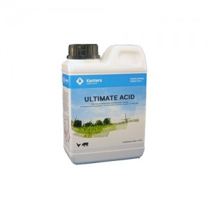 ULTIMATE ACID